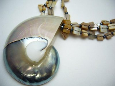 50-60mm Pearlized Nautlius Shell Pendant w/ Lip Shell Necklace