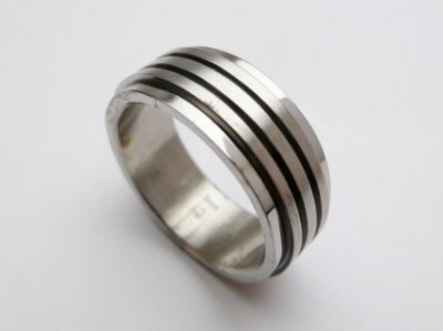 Stainless Steel Double Spin Ring
