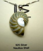 25mm Pearlized Nautilus Shell Pendant w/ 925 Silver Chain 18""