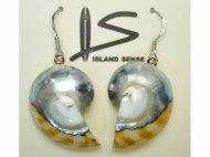 925 Silver-25mm Silver Nautilus Shell Earring