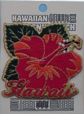 Hawaii Hibiscus Flower Patch